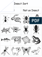 insect sort