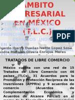 Ambito Empresarial en México