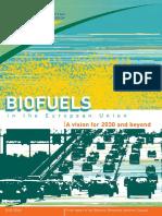 Biofuels Vision 2030 En