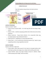 Penyakit Vesikodermatologi Pada Kulit