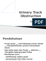 Urinary Track Obstruction