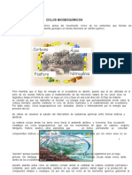 Ciclos_BiogeoQuimicoss