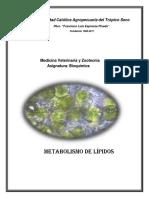 folleto-4-metabolismo-de-lipidos.pdf