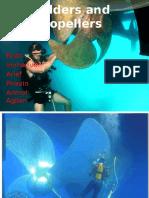ruddersandpropellers-140816052453-phpapp01