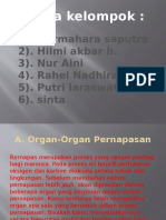 Biologi ( Sistem Pernapasan) Power Point