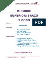 Brazo y Codo Anatomia.docx Informefinal