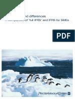 NIIF Para Las PYME Similitudes y Diferencias Con NIIF