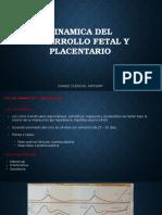 Dinamica Del Desarrollo Fetal y Placentario