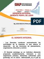 gerencia integral.PDF