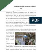 Reporte del documental Destrucción Del Manglar Tajamar en Cancún Quintana Roo