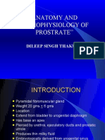 """ ANATOMY AND PATHOPHYSIOLOGY OF PROSTRATE"""