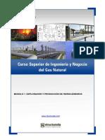 ingenieria-negocio-gas-natural.pdf