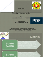stroke hemo