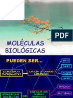 Moleculas biologicas