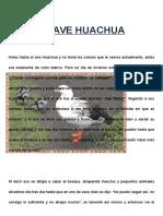 El Ave Huachua