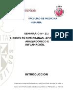 QUIM-SEM-11 LIPIDOS EN MEMBRANAS ACIDO ARAQUIDONICO E INFLAMACION.docx