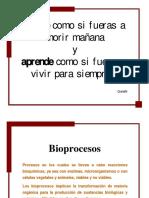 1 BioProc UNAB 2012.pdf