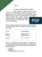 FRANKLIN CASTRO RAMIREZ(1).docx
