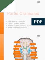 Pares-Craneales.pptx