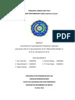 PENGARUH AIR LIMBAH TAHU.pdf