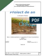 proiect-Valentina.doc