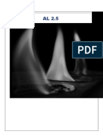 12º AL 2.5 - Determinação da Entalpia de diferentes alcoois