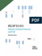 Guía SAP HCM