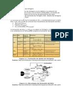Formación de Óxidos de Nitrógeno