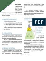 RESUMEN DE DOCTRINAS ABSOLUTISTAS Y REALIDADES POLITICAS