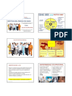 4 SALUD OCUPACIONAL_NVIOx6.pdf