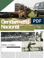 422Suplemento-Canes.pdf