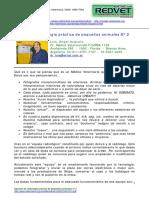 Radiologia veterinaria N°2