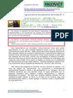 Radiologia veterinaria N°4