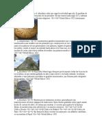 Aporetes culturales mayas.docx