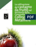 Castagna Nitti