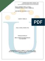 Estudio de Caso Fases 1, 2 y 3_gissellepulido_grupo_358019_53