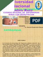 DESNUTRICION COMPLETAS