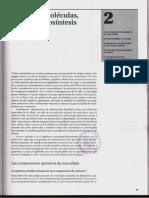 Capítulo 02 - Pequeñas Moléculas, Energía y Biosíntesis