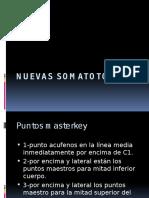 Tema 11-Nuevas Somatotopias