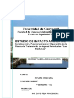Proyecto-impacto-ambiental-2p.docx