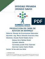 Produccion Caña de Azucar