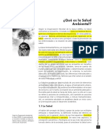 SALUD_AMBIENTALCapitulo_1._Que_es_la_Salud_Ambiental.pdf