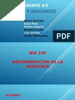 Documentacion de La Auditoria NIA 230