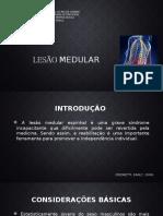 Lesão Medular Versao Original