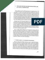 Orden Público Laboral Pedro Irureta