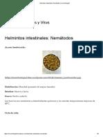 Helmintos Intestinales_ Nemátodos _ Microbiologia2