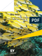EY Insights on GRC Big Data