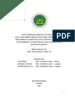 Pkm-MBatu Akik