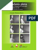 Ciudadania Plena y Derechos en El Contexto de La Diversidad Sexual y de Generos