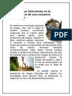 Factores que intervienen en la dependencia de una sustancia psicoactiva